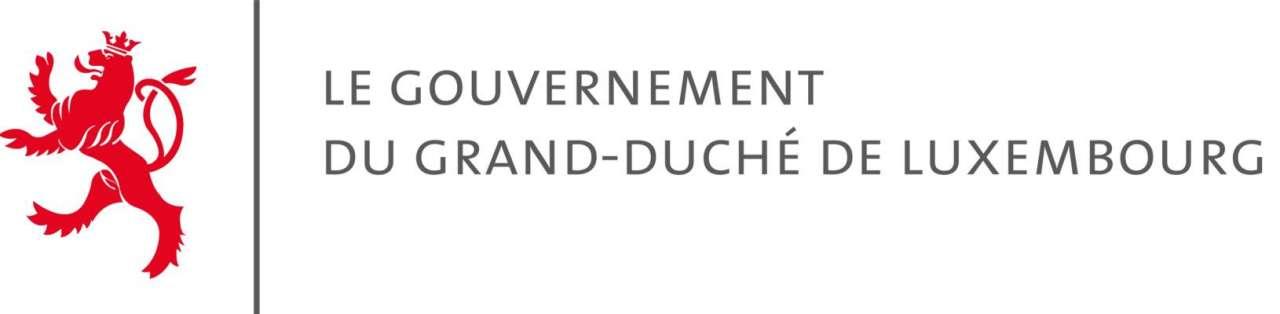 Image article - COMMUNIQUÉ DU GOUVERNEMENT - RÉSUMÉ des travaux du 1er AVRIL 2020